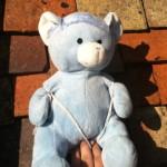Teddy_Jump_4